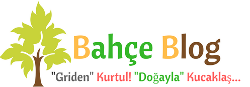 site:www.bahceblog.com/  ile ilgili görsel sonucu